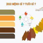 2022 mệnh gì và tuổi gì ? Cung mệnh phong thủy 2022 đầy đủ nhất