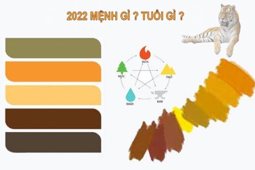 2022 mệnh gì ? tuổi gì ? cung mệnh phong thủy 2020 2001201